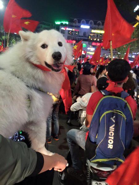"""Olympic Việt Nam vào tứ kết ASIAD 2018, """"Sen"""" dẫn """"Boss"""" xuống đường đi bão"""