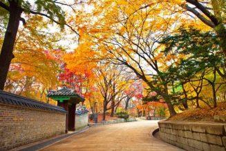 10 điểm đến không thể bỏ lỡ khi du lịch Hàn Quốc